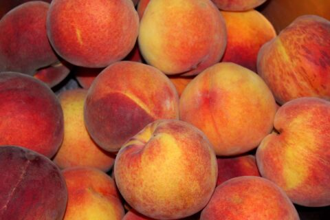 peaches-3680834_1920